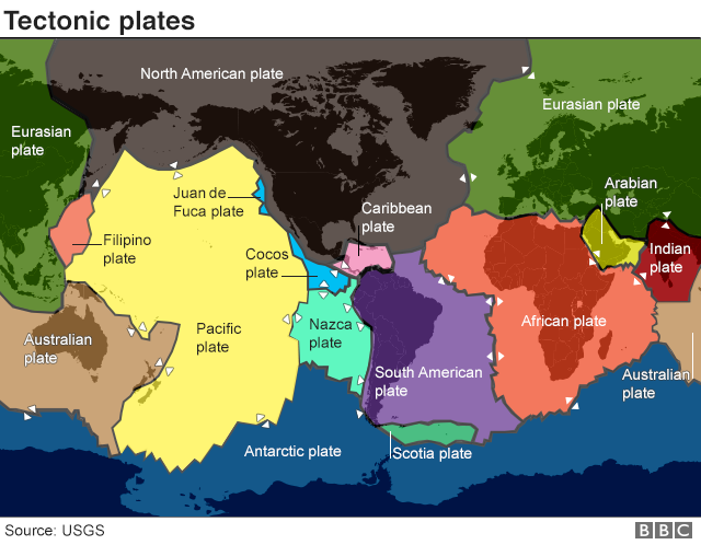 The tectonic plates are shifting in organ